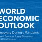Halaman Awal Laporan IMF-IMF